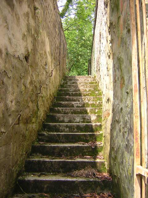 Stairway to the garden