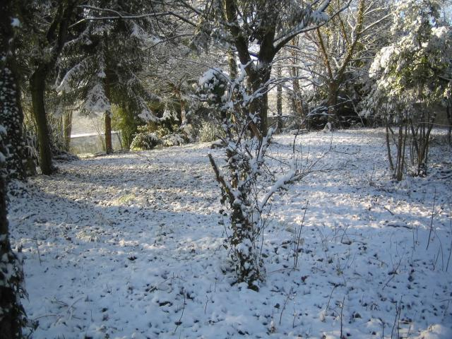 In the inner court in winter